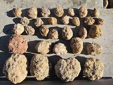 30 Unopened Geodes