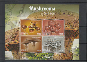 Micronesia 2013 MNH Mushrooms of Pacific II 4v M/S Nature Gymnopilus Psilocybe