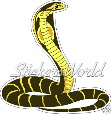 Bumper Decal COBRA SNAKE Kingcobra 140mm Vinyl Sticker