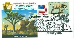 Joshua-Albero-National-Park-California-Colore-Marchio-con-Vista-Pm