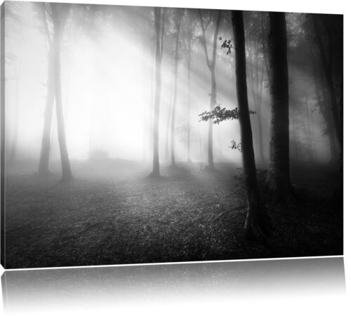 Düsterer Wald im Nebel Schwarz//Weiß Leinwandbild Wanddeko Kunstdruck
