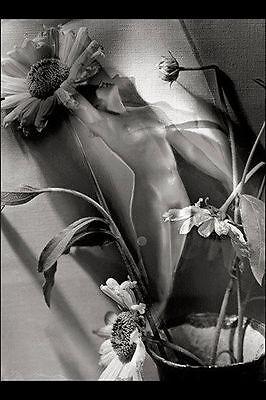 Manasse nude metamorphic picture photo print optical illusion female woman art
