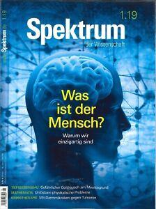 Spektrum-der-Wissenschaft-Heft-Januar-2019-Was-ist-der-Mensch-wie-neu