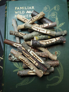 Celtic Ogham Staves with Bag & Information made with corresponding woods (ogam)