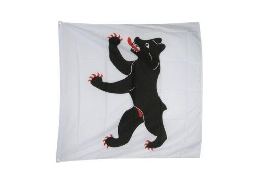 Schweiz Kanton Appenzell-Innerrhoden Hissflagge Appenzeller Fahnen Flaggen 90x90