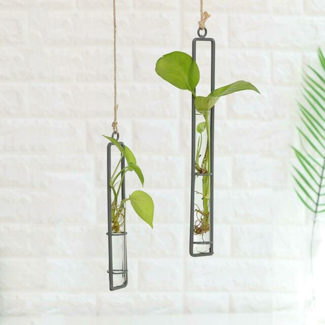 Iron Hydroponic Hanging Test Tube Plant Container Holder Vase Flower Home Decor