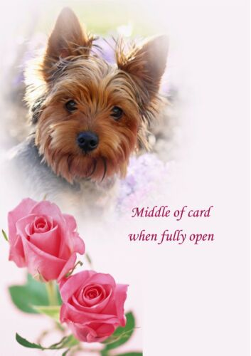 PERSONALISED YORKIE YORKSHIRE TERRIER ROSE BIRTHDAY ANNIVERSARY ETC CARD Insert