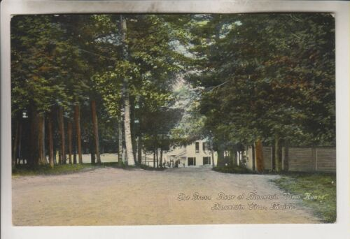 1910 POSTCARD THE GROVE REAR OF MOUNTAIN VIEW HOUSE MOUNTAIN VIEW MAINE
