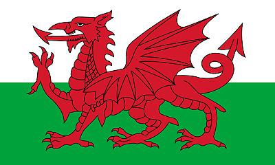 Royal Irish Fusiliers Kings Colours 9th Battalion flag 5x3ft