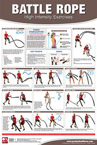 Battle Ropes For Sale >> BATTLE ROPE EXERCISES Professional Fitness Health Club Gym ...