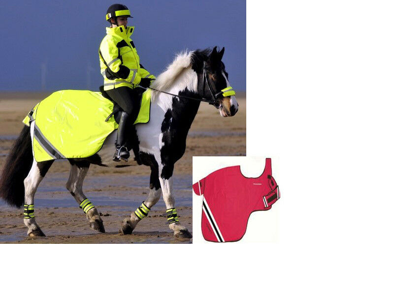 Equisafety Winter Exercise Sheet Fluorescent Horse Rug - FREE DELIVERY
