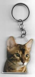 BENGAL-CAT-K-FOBS-PORTE-CLES-CHAT-BENGAL