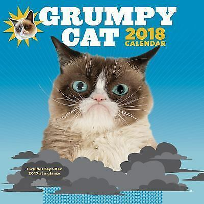 Grumpy Cat Calendar 2022.Grumpy Cat 2018 Wall Calendar 9781452159980 Ebay