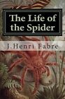 The Life of the Spider by J Henri Fabre (Paperback / softback, 2015)