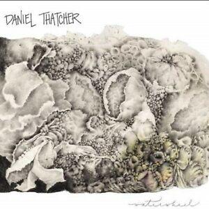 Daniel Thatcher - Waterwheel [New CD]