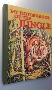 My Picture Book Of The Jungle Demuestra Ward Lock&co London No Fecha ABE