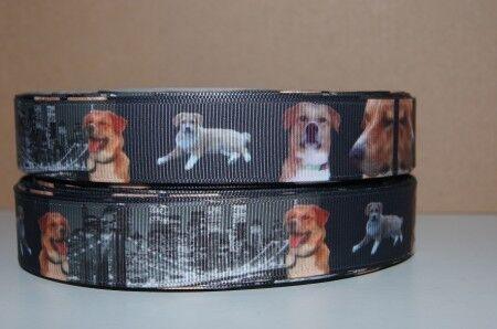 1114 Hunde//Amerika Sonderband Borte Webband 22mm Breite Ripsband