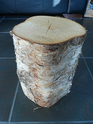 "Silver Birch Bark Wood Log Decorative Display Log Centrepiece.12"" Tall. 6-7"" Dia"