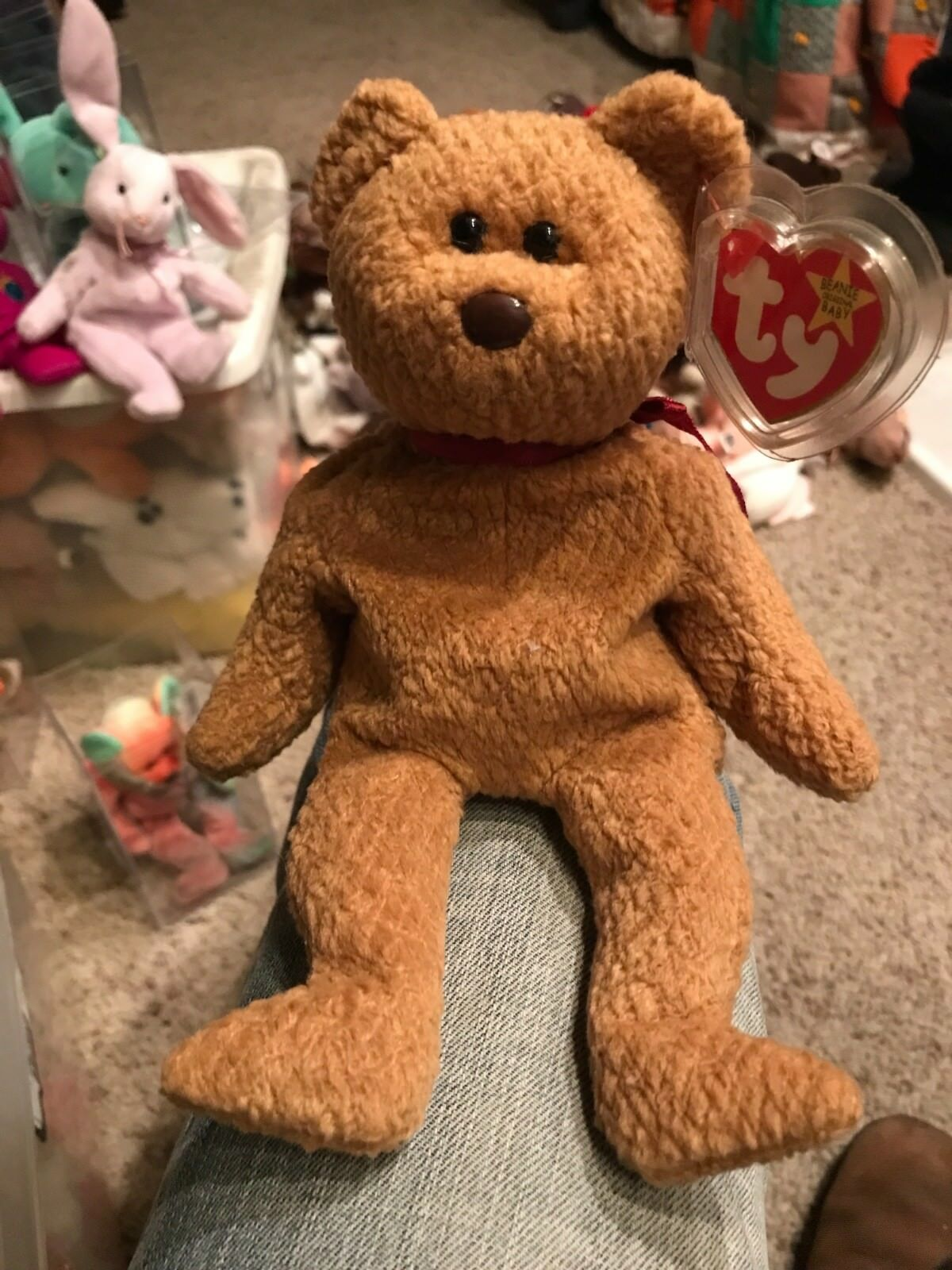 Original Retired Ty Beanie Baby - Curly the Bear - MANY ERRORS - Rare