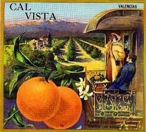 Pomona Cal Vista Train Car Orange Citrus Fruit Crate Label Art Print