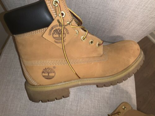 Timberland TB010073 6 inch Boot for Men, Size 9 Wh