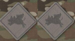 Daesh Whacker Green Berets Sfg Advisors Scellé SAS JTF2 Bardane Tab : Cochon Vol