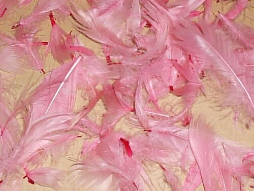 BIODEGRADABLE CONFETTI ultimate confetti Pale Pink Hand dyed feathers