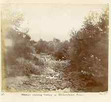 South Africa, Women washing clothes in Stellenbosch River  Vintage citrate print