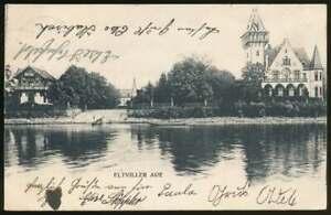 AK Eltviller Aue, gelaufen 1904 (65892)