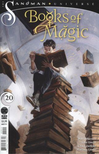 BOOKS OF MAGIC #20 VF//NM DC COMICS 2020 HOHC