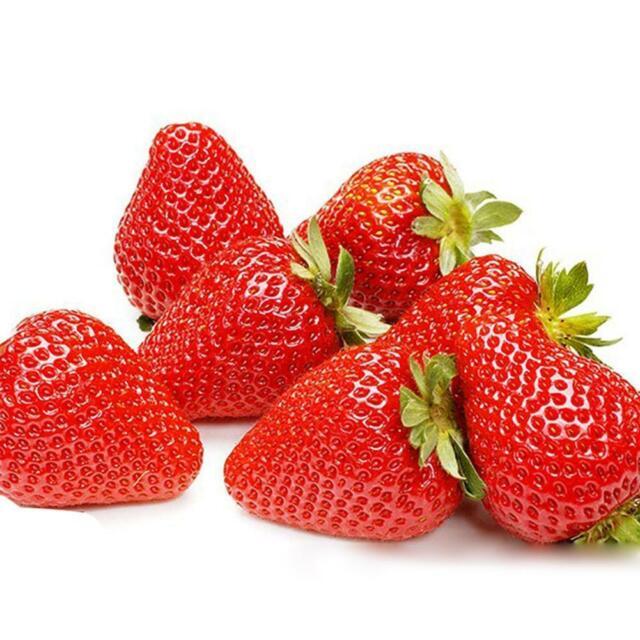 Hot 200x Giant Strawberry Seeds Rare Fragaria Huge Net Sale Neu V1W9 Fruit G3M6