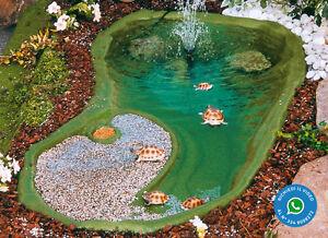 laghetto termoformato ninja bacino laghetto da giardino