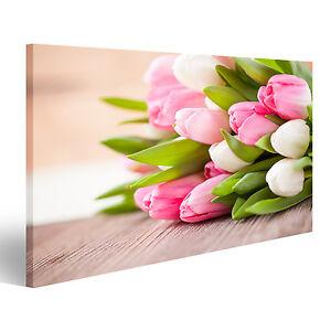 tulpen auf holz fr hlingsbild fr hling bild auf leinwand poster azn 1k ebay. Black Bedroom Furniture Sets. Home Design Ideas