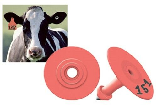 ALLFLEX GLOBAL Small Round Ear Tags with Buttons RED BLANK  25ct Pkg