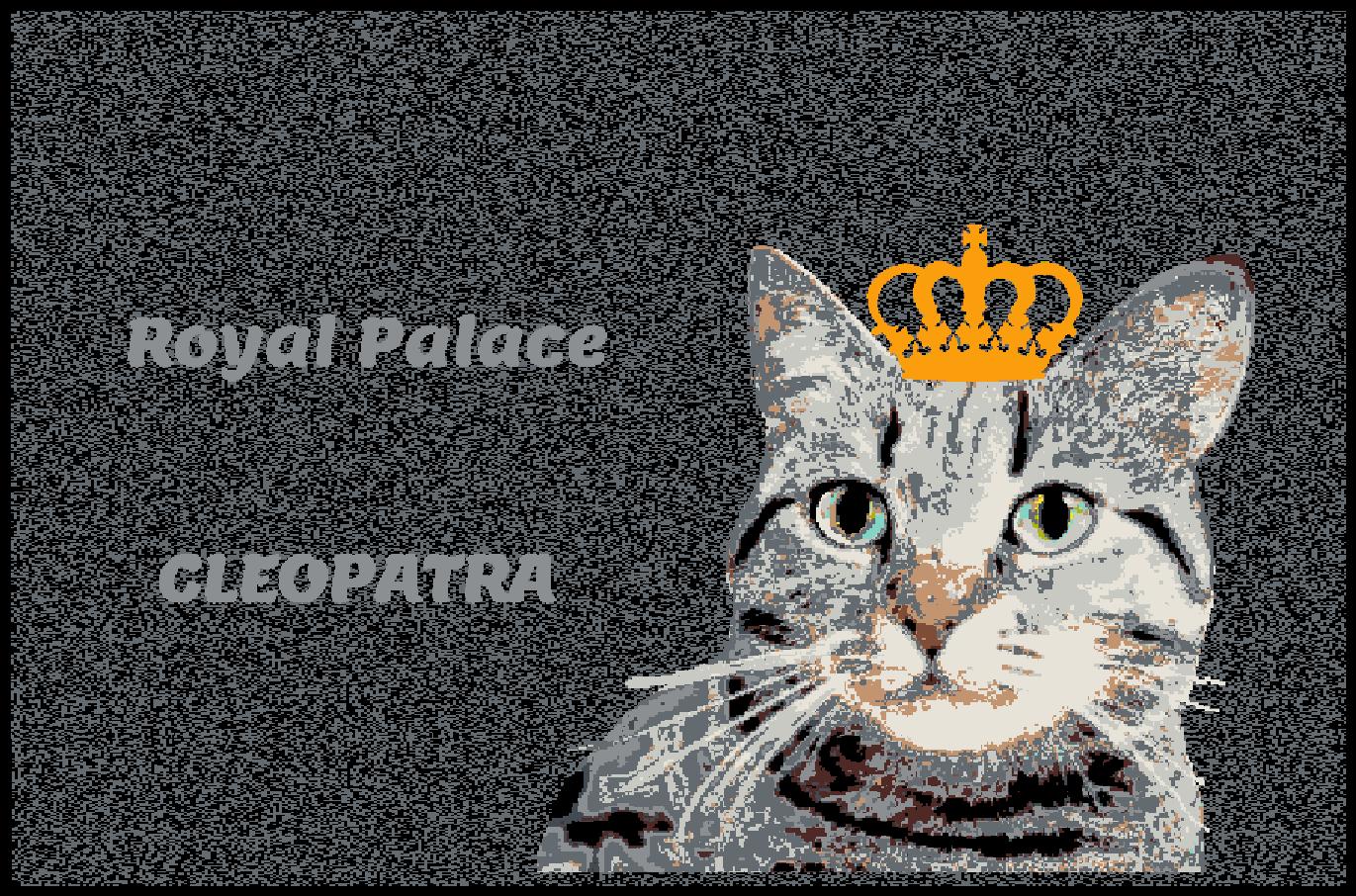 Fußmatte mit mit mit Namen Napfunterlage Katzenmatte  90x60 cm  Design 27180038   Sale Düsseldorf  606a2a