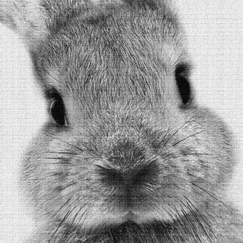 CW/_ Nordic Rabbit Print Poster Wall Art Animal Painting Living Room Decor Latest