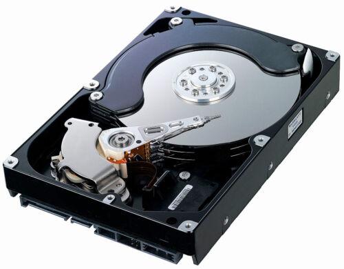 """250GB SATA 3.5/"""" Desktop HDD hard drive"""