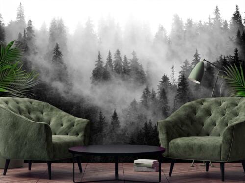 Wundervolle Xxl Vlies   Fototapete Wald Wanddeko Poster 15F0414000 Bäume im Nebe