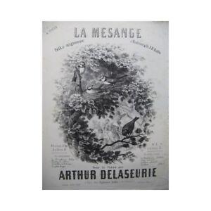 Delaseurie Arthur Die Meise Piano 4 Hand Noten & Songbooks Antiquarische Noten/songbooks 1859 Partitur Sheet Music Score Online Rabatt