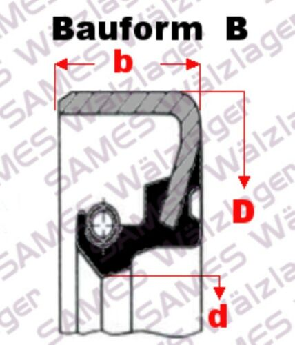 Oil-Seal 1 Stück 25x42x10 B= Simmerring Wellendichtring B1,D1,SB,WB,822N