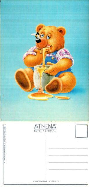 1980's HONEY BEAR BY JOHN REILLY UNUSED ATHENA COLOUR POSTCARD