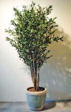 Exklusiver Olivenbaum mit Früchten ca 120 cm getopft! Kunstpflanze Kunstpflanzen
