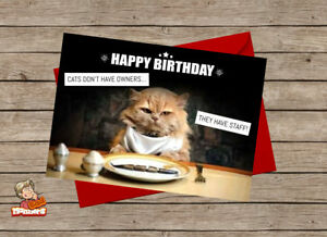 Image Is Loading Birthday Card For Cat Lovers From The