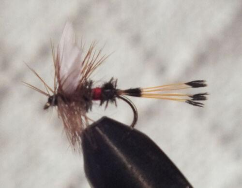 Royal Coachman Trout Fly Size 12-1 Dozen Dry Flies F710 12