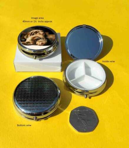 Labrador Retriever Puppies Sleeping Dogs Polished Round Metal Pill Box Gift