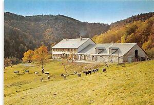 BR4578-Ferme-restaurant-pension-Glashutte-Poste-Guebwiller-germany