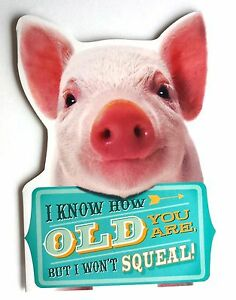 Funny cheeky pig birthday card great hallmark design i know how image is loading funny cheeky pig birthday card great hallmark design bookmarktalkfo Image collections