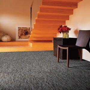 Teppichboden-Superstar-3m-4m-5m-Breite-100-Polypropylen-4-Farben-Robust-WY