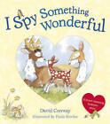 I Spy Something Wonderful by David Conway (Paperback, 2011)