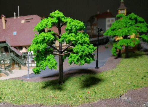 mit leicht gefächerten Blättern 5 mittelgrüne Bäume 100 mm hoch
